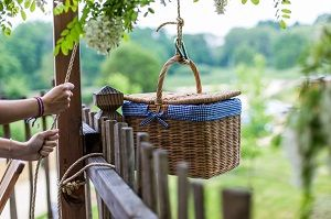 Apéritif basket in a Tree House